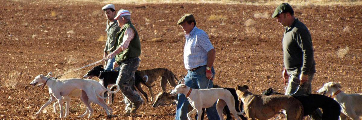 Un grupo de galgueros durante una jornada de caza en Ciudad Real / EFE